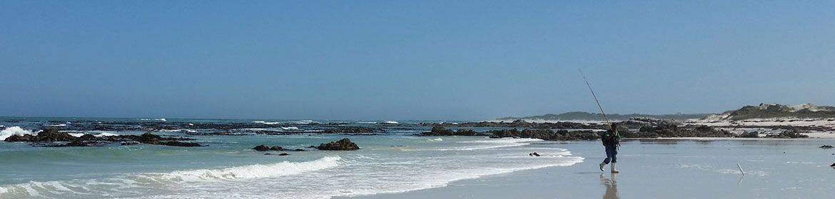 hermanus header
